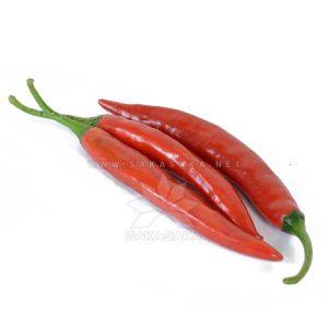 big-red-chilli